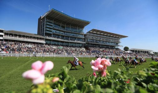 Eye-catchers: Three horses for the tracker from a big week at York's Ebor Festival