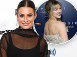 Lea Michele's former Glee costar Melissa Benoist likes series of posts about Lea's bullying