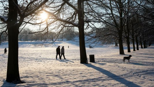Best parks in London for a winter walk