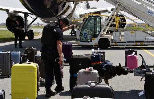 Man made fake bomb to get flight attendant to date him