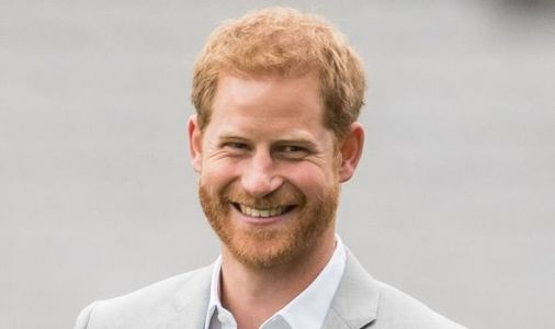 Prince Harry shares new glimpse of LA home with Meghan Markle in Zoom call