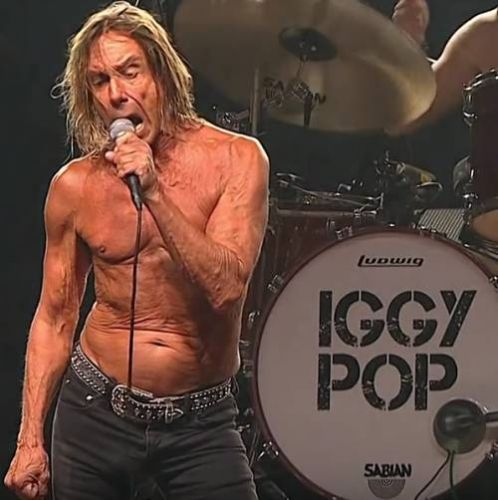 Iggy Pop calls on Florida senators to pass bill protecting big cats