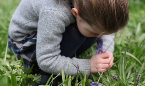 Poignant picture of Princess Charlotte smelling a bluebell released