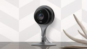 Nest Cameras Stopped Working for 16 Hours