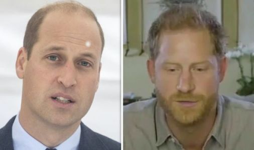 Royal rift: William and Harry fight charity 'publicity battle' over environment