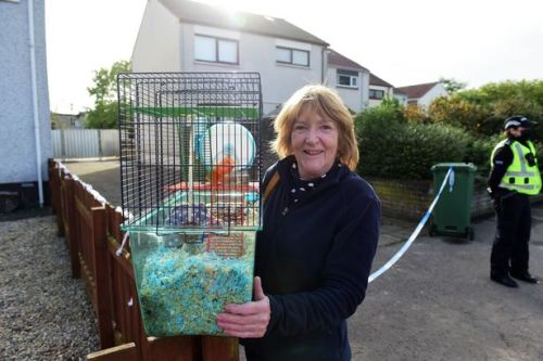 Scots gran thought bomb had gone off as windows shattered during Ayr house explosion