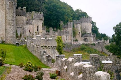 Woman Dies After Being Hit By A Car Near I'm A Celebrity Castle In Wales