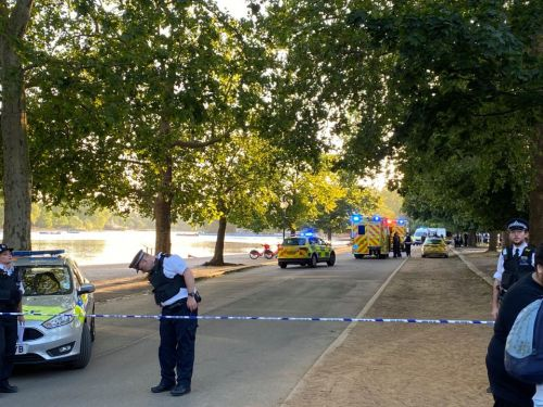 Armed police swarm Hyde Park as four arrested over 'violent disorder' after thousands of sunseekers descend on area