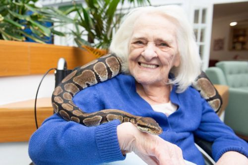 Care home welcomes snakes and other reptiles to animal therapy sessions
