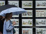 Stamp duty cut sees estate agent calls surge