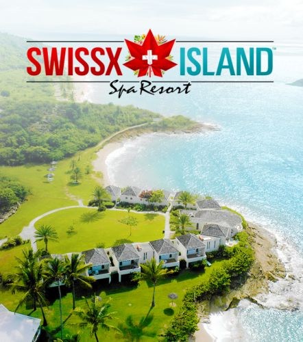 Alki David hosts incredible music party on Swissx Island