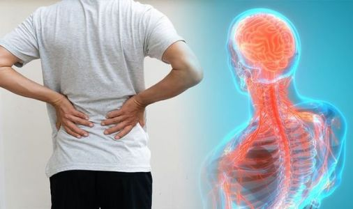 Back pain: When your back pain may be caused by something more serious - symptoms to spot