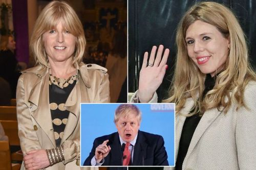 Boris Johnson's sister claims she's never met his girlfriend Carrie Symonds