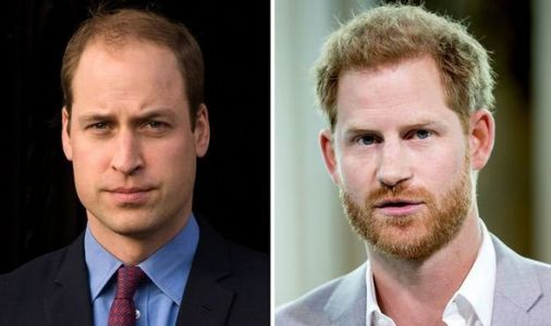 Royal split: Meghan drops Harry and William rift hint in birthday post - 'Odd choice'