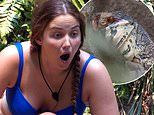 I'm A Celebrity campmates left stunned as a huge Goanna lizard swallows kangaroo tail whole