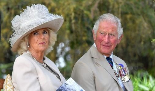 Charles and Camilla record heartfelt message for special event - 'Light in the darkness'