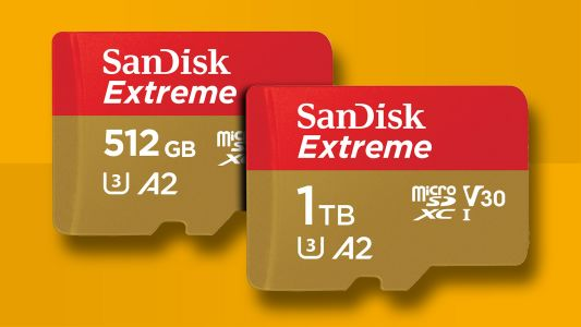 This is the cheapest 1TB microSD right now