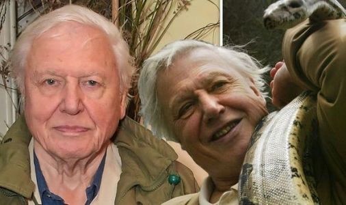 David Attenborough Life On Our Planet: How to get tickets to ONE NIGHT ONLY screening