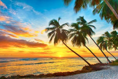 Barbados offers Brits year-long stay to work remotely from idyllic island