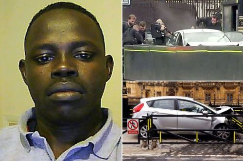 Parliament attacker who tried to kill police and cyclists is jailed for life