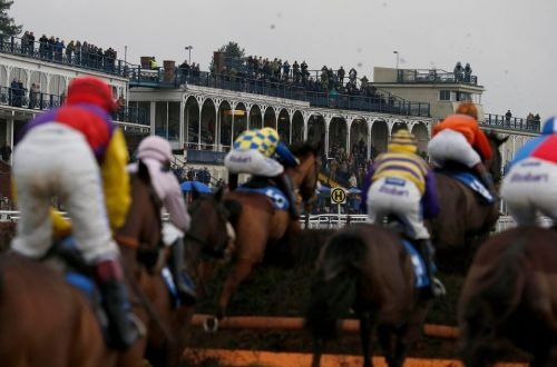 Templegate's racing tips: Kempton, Southwell, Taunton, Ludlow and Chelmsford - Templegate's betting preview for racing on Thursday, November 15