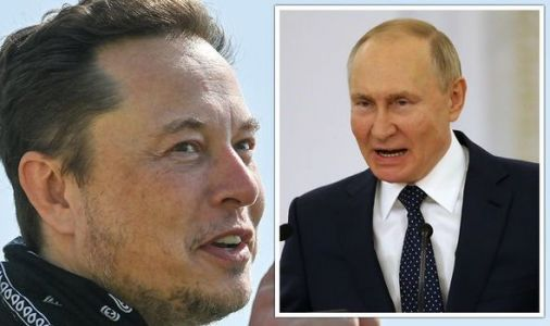 Elon Musk 'interested' in UK Tesla factory after snubbing Russia: 'Fantastic opportunity!'