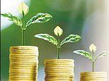 Seeds of change taking ethical investing from niche to mainstream