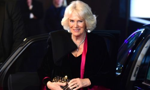 The Duchess of Cornwall looks stunning in black gown with a splash of pink at 1917 film premiere with Prince Charles