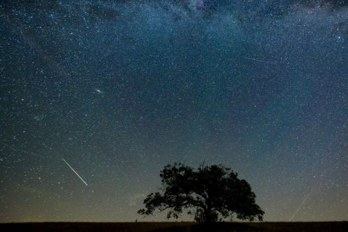 Orionid Meteor Shower peaks tonight - where to see shooting stars above the UK