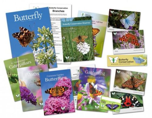 Butterfly Conservation - 12 months free membership