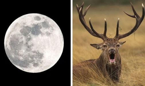 Buck Moon 2020 meaning: NASA welcomes the July Full Moon this weekend