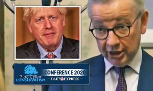 Michael Gove hits out at 'BBC and SW1 bubble' in explosive Brexit tirade