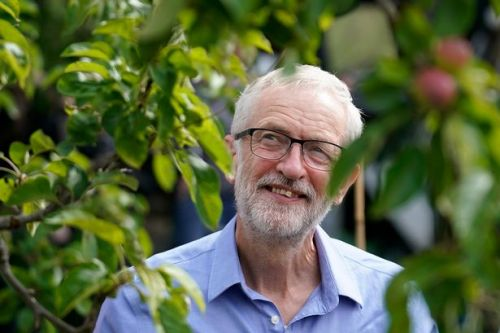 Labour manifesto tops climate policies league table - beating the Green Party
