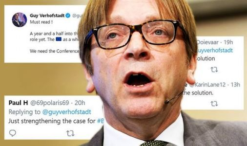 'No EU is the solution' Verhofstadt mocked after admitting MEPs don't have a role