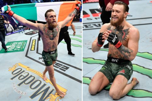 Conor McGregor destroys Cowboy Cerrone in just 40 SECONDS of first round in stunning UFC 246 return