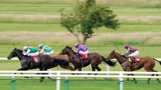 Stewards' Cup Tips: Expect Hurricane Ivor to blow rivals away