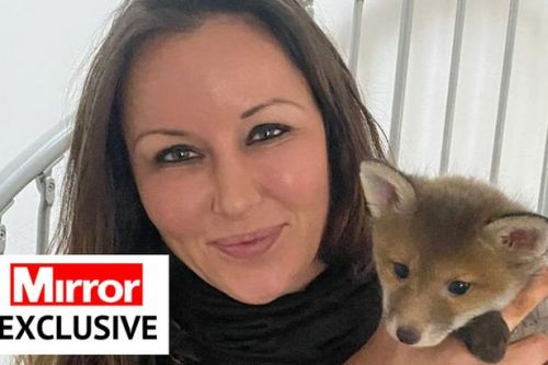 Hand-reared fox cub thinks woman is mum, lives in bathroom and cuddles poodle