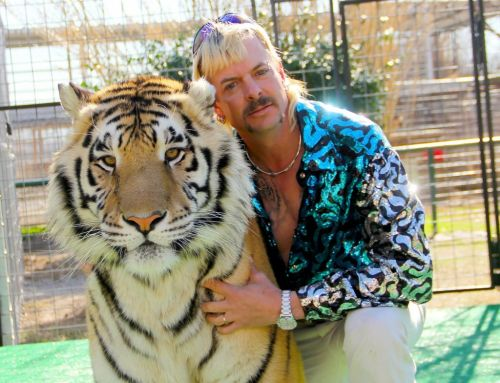 Tiger King: Band Joe Exotic paid to fake country music career hope for record deal after documentary success