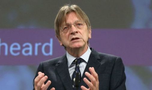 'Negotiating sausages while world burns' EU can't move on from Brexit admits Verhofstadt