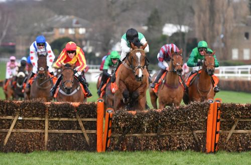 Sandown races: tips, racecards and preview for Saturday's Tingle Creek card