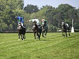 Robin Goodfellow's racing tips: Best bets for Tuesday, May 22