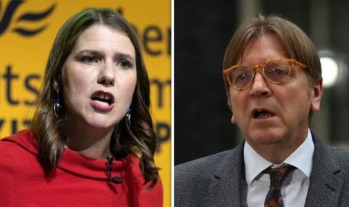 Remainer rant: Lib Dems applaud as Guy Verhofstadt proclaims the end of nation states