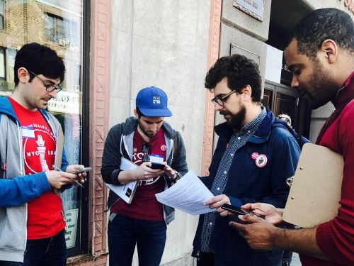 How to get involved in an activist organization and become a valuable volunteer - starting today