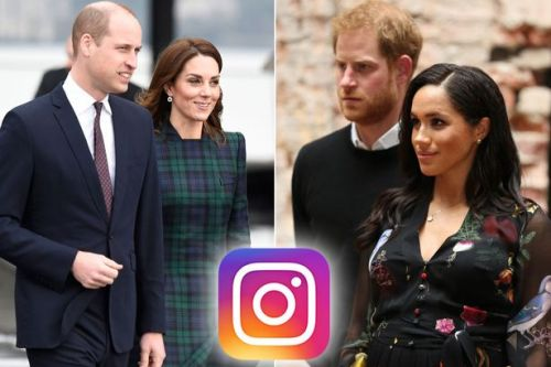 Prince Harry and Meghan hire a social media expert to boost their popularity