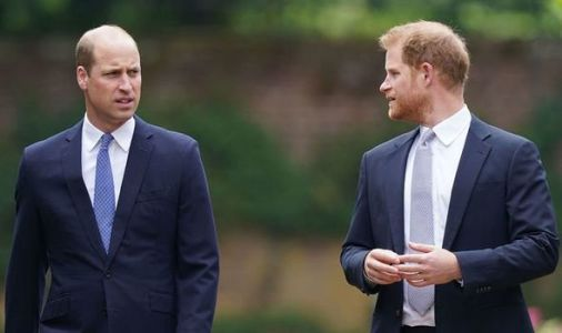 Prince William inspired Harry to start family after Duke thought: 'I'd like a bit of this'