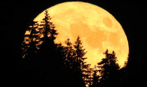 Full Moon 2018: When is the June Strawberry Full Moon next week?