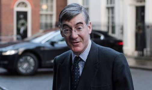 Jacob Rees-Mogg confronted by former MEP in Brexit row - 'It is disingenuous!'