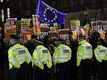 Bitter Remainers waving EU flags gather outside Downing Street in protest at Boris Johnson win