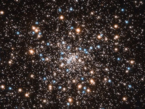 A surprising swarm of black holes found in nearby globular cluster
