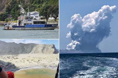 New Zealand volcano: Names of missing released as skin shipped from US for victims